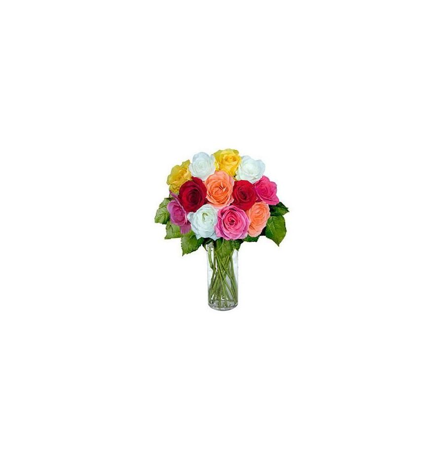 12 Short Stem Mixed Roses
